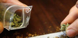 Etnobotanicele vor fi considerate droguri