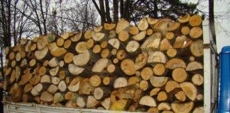 Transport ilegal de lemne, indentificat pe un drum forestier din Tismana