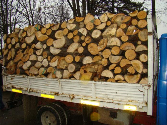 Transport ilegal de lemne, depistat pe DN 67 D, la Tismana