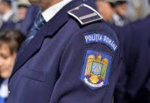 Transport ilegal de animale, depistat de polițiștii gorjeni