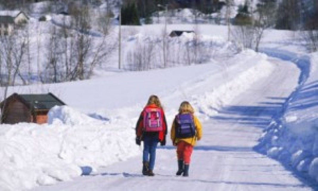 Zile libere pentru părinţi dacă se închid şcolile din cauza vremii
