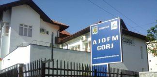 Sute de locuri de muncă disponibile în Gorj