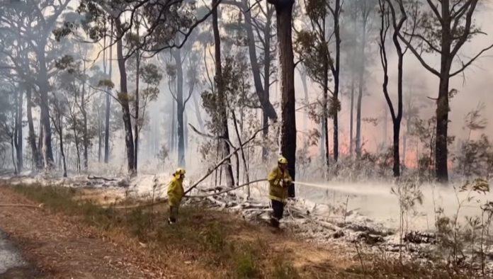 Răgazul oferit de ploi în Australia se încheie, revine canicula