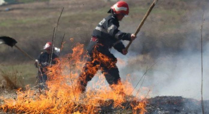 Incendii de vegetație în trei localități din Gorj