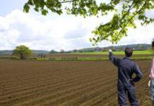 Ministrul Agriculturii: Tinerii fermieri vor beneficia de terenuri concesionate de 50 de hectare