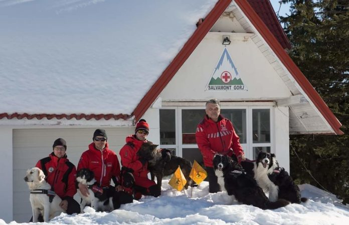 Câinii pentru salvare montană, evaluați la Rânca