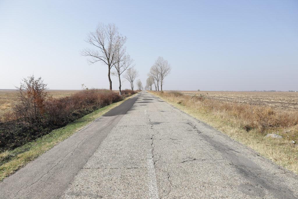 La tronsonul doi al drumului judeţean 561A Moțăței - Dobridor - Unirea - Plenița - limita cu judeţul Mehedinți au fost depuse patru oferte