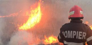 110 hectare de vegetație uscată, mistuite de foc