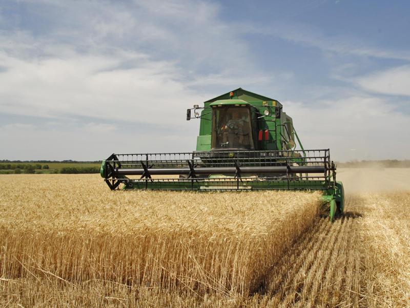 Plafoanele pentru măsurile de sprijin cuplat în sectorul vegetal, aprobate de Guvern