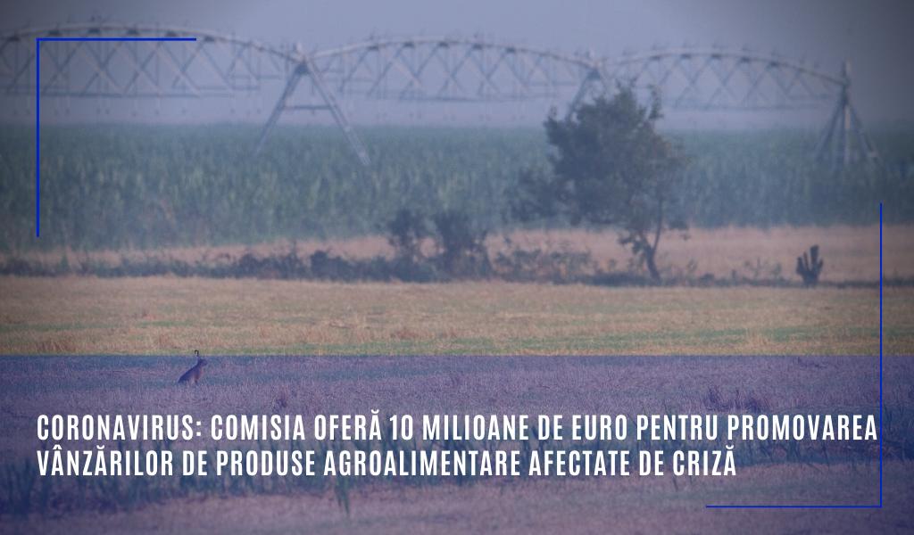 Comisia oferă 10 milioane de euro pentru promovarea vânzărilor de produse agroalimentare afectate de criză