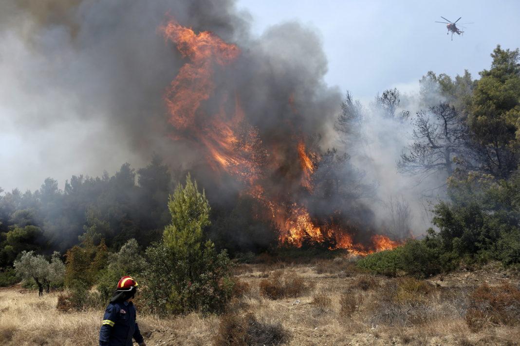 Un incendiu de vegetaţie a izbucnit în apropiere de Epidaur, Grecia