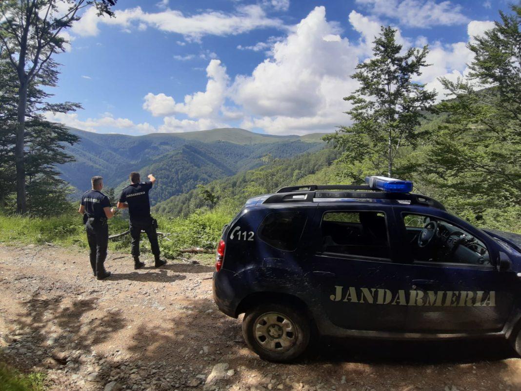 Jandarmii au sancționat doi șoferi care își testau mașinile pe o pajiște alpină
