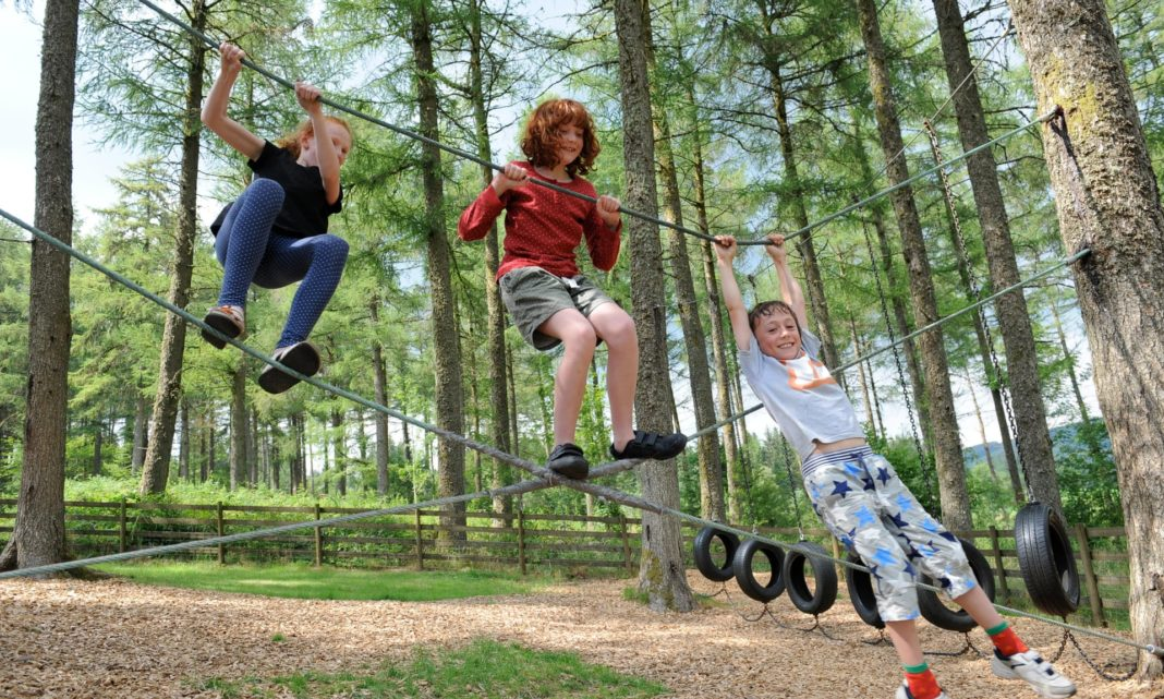 Copiii care cresc în zone cu spații verzi au un IQ mai ridicat
