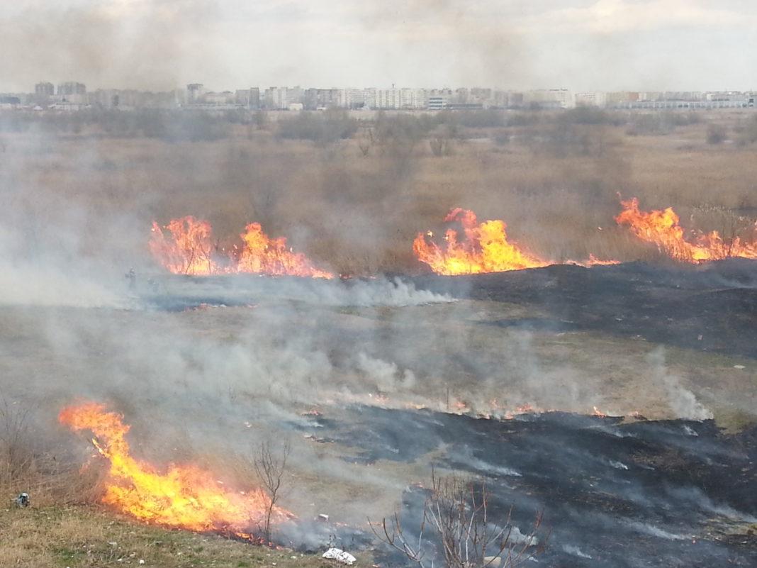 Incendiu de vegetație la Periș, lângă București