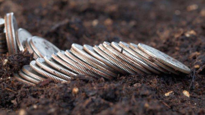 La 1 decembrie, APIA va demara plata ultimei tranșe a subvenției pe suprafață acordată fermierilor
