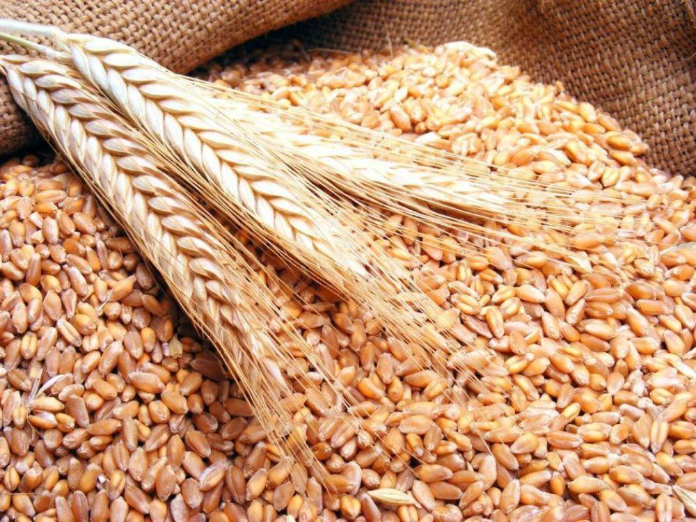 Iordania a cumpărat 60.000 de tone de grâu din România
