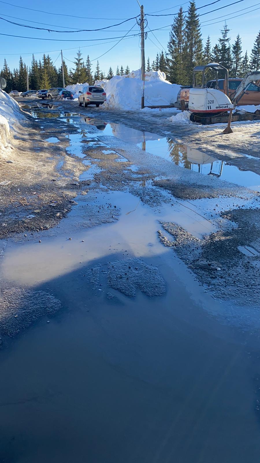 toni pierdere în greutate zăpadă)