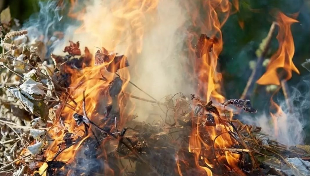 Arderea frunzelor şi resturilor vegetale, interzisă pentru că poluează aerul