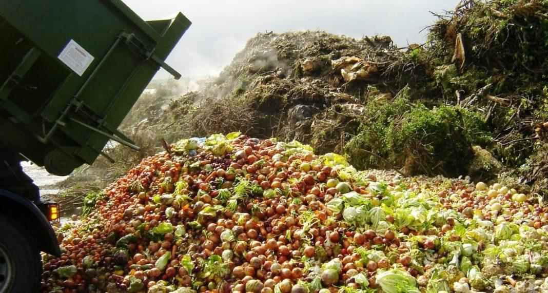 Oamenii aruncă anual aproape un miliard de tone de alimente