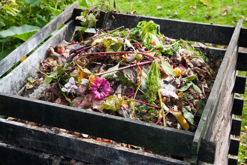 Cum reciclăm resturile vegetale din gospodărie