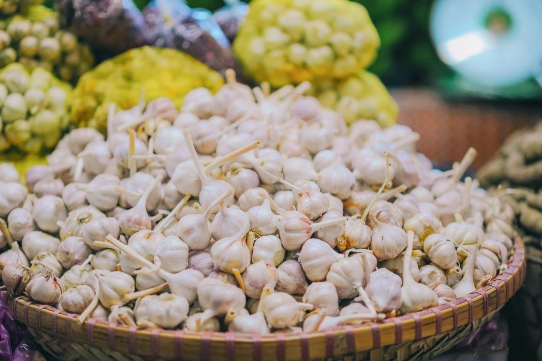 Guvernul a aprobat programul de susţinere a producţiei de usturoi