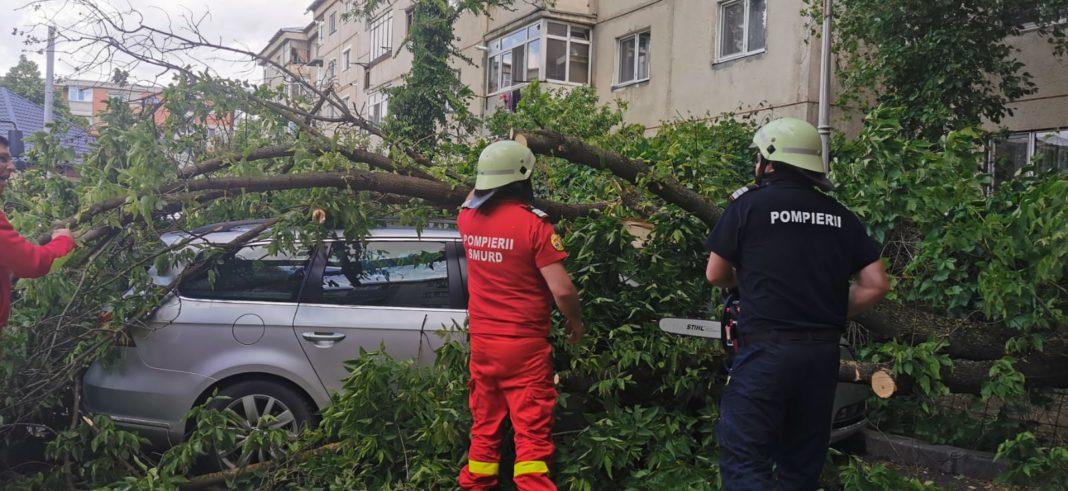 Pompierii craioveni au acționat în această după amiază degajarea unor copaci care au căzut pe câteva autoturisme, în urma rafalelor de vânt.