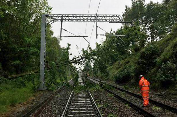 Un copac a rupt un fir de înaltă tensiune care a căzut pe linia de contact a căii ferate, în apropiere de Ploieşti