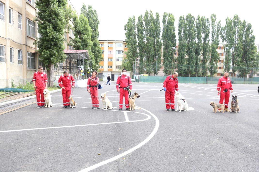 Lecţie cu câini de salvare la Şcoala