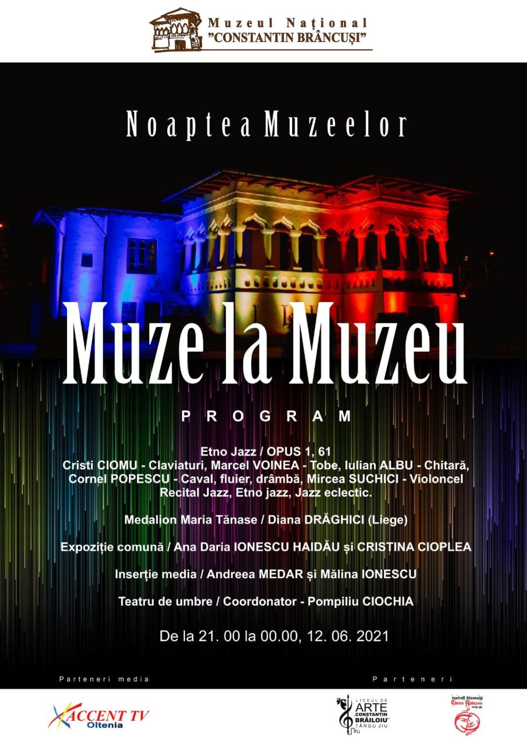 """Noaptea Muzeelor, găzduită și de Muzeul Național """"Constantin Brâncuși"""""""